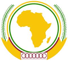 Défenseurs de la Démocratie de 52 Pays Africains Écrivent une Lettre au Chef de L'État Érythréen